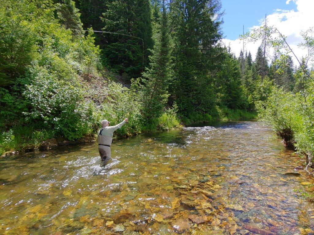 Fly-fishing the CDA River