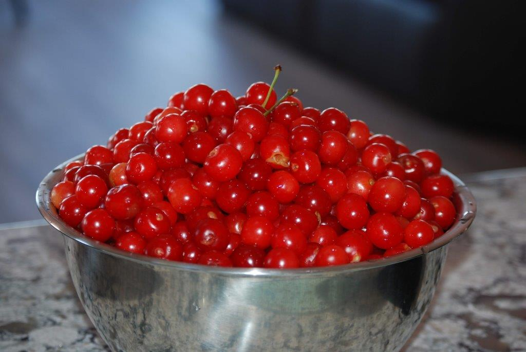 More Cherries, Cherries, Cherries!